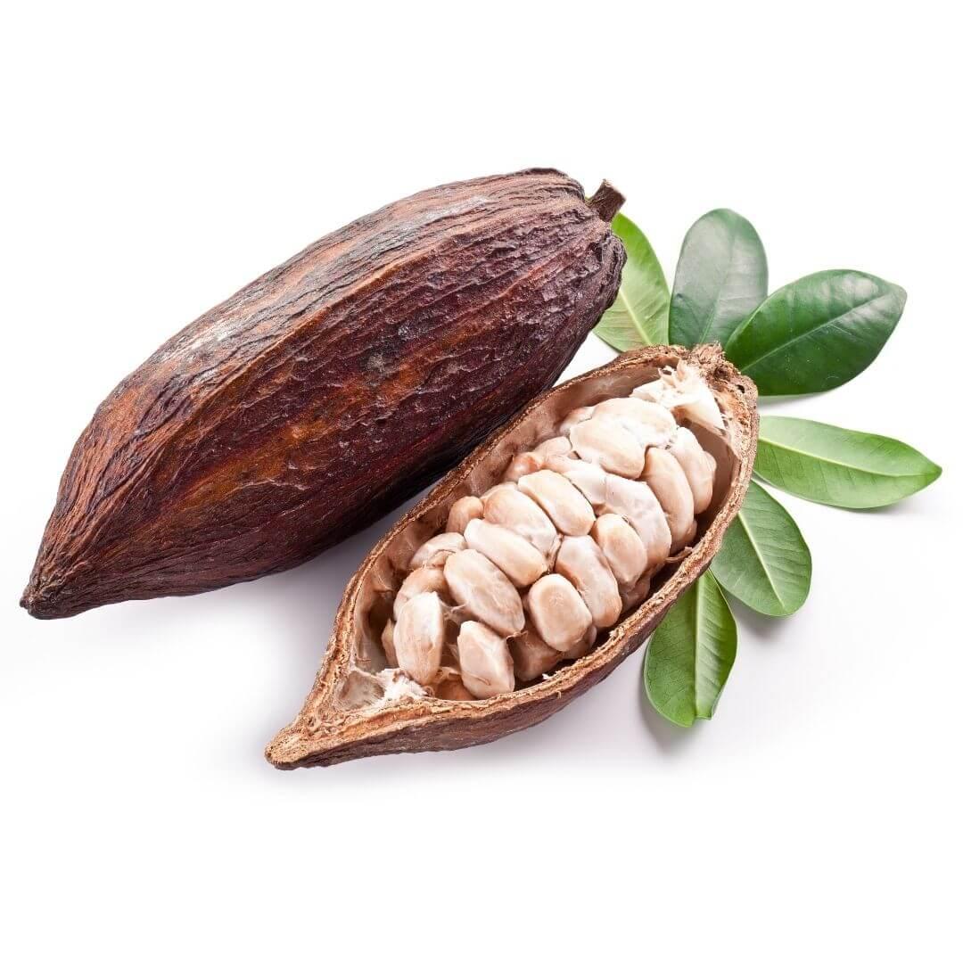 Sainderma-Cocoa-butter.jpg